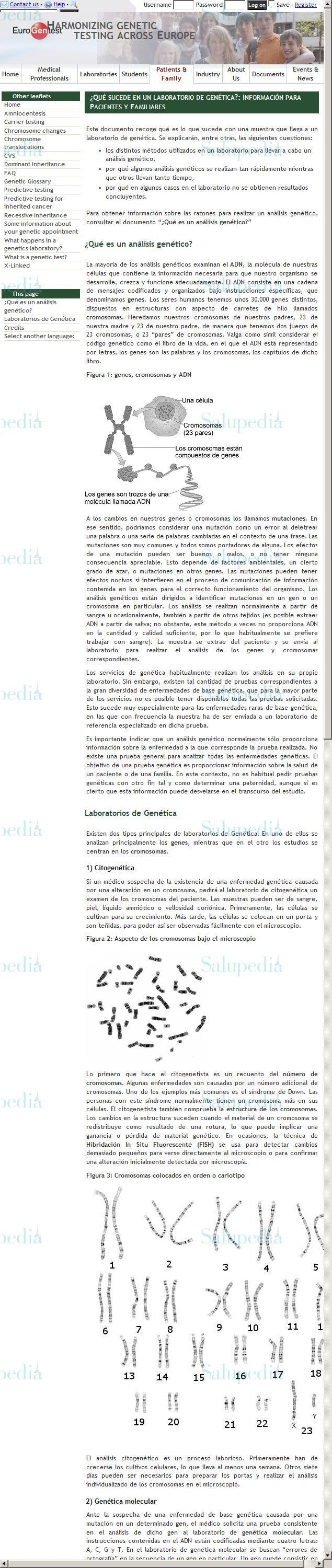 Cache grafica http://www.eurogentest.org/patient/leaflet/spanish/what_happens.xhtml