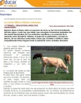 Captura de http://www.educarensalud.org/info/info_reportajes.asp?idr=58#