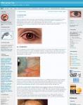 Captura de http://ocularis.es/blog/?p=173