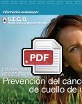 Captura de http://www.sego.es/Content/pdf/visualizador_largo.pdf