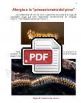 Captura de http://alergomurcia.com/pdf/Alergia_a_procesionaria_del_pino.pdf