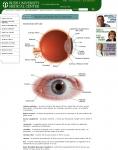 Captura de http://www.rush.edu/spanish/speds/eye/eyeant.html