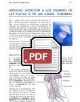 Captura de http://www.juntadeandalucia.es/salud/servicios/contenidos/medusas/MEDUSAS_completa.pdf